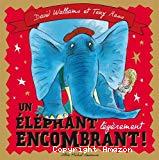 Un éléphant légèrement encombrant !