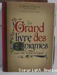 Le grand livre des énigmes, casse-tête et jeux de logique