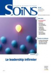 Leadership professionnel
