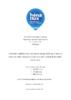 Continuité et globalité des soins dans la pratique de la sage-femme au travers du cadre d'analyse des soins maternels et néonatals de qualité  - application/pdf